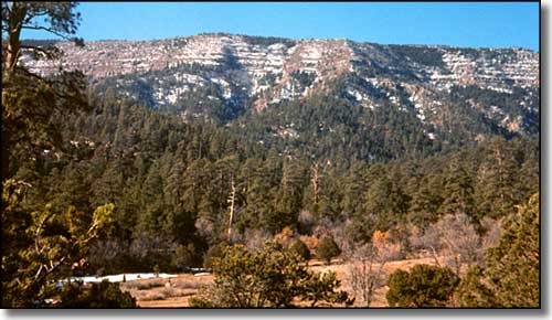 Manzano Mountain Wilderness