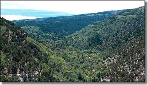 Sandia Mountain Wilderness, Cibola National Forest
