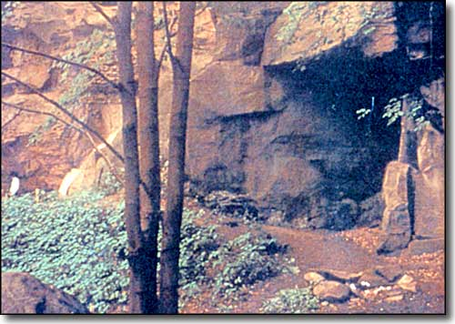 Meadowcroft Rock Shelter