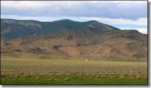 Cochetopa Hills, just west Saguache