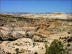 Calf Creek Canyon