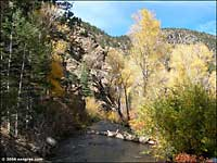 Gold Medal fishing stream in Cimarron Canyon