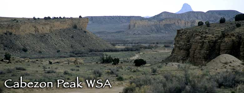 Cabezon Peak Wilderness Study Area, New Mexico