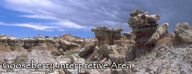 Gooseberry Interpretive Area, Wyoming