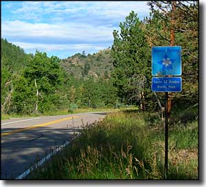 Byway sign on the Cache la Poudre-North Park Scenic Byway