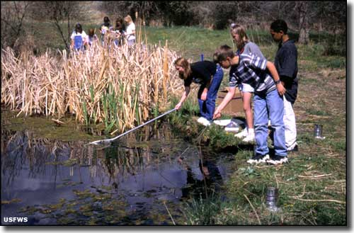 Students learning about nature at Two Ponds National Wildlife Refuge