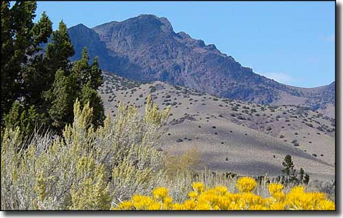 King Lear Peak rising above South Jackson Mountains Wilderness