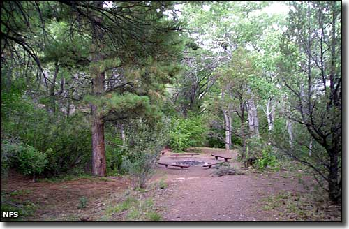 Fishlake National Forest Campgrounds