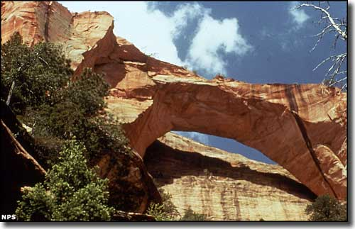 Kolob Arch in Zion Wilderness, just west of Beartrap Canyon Wilderness