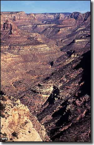 Dark Canyon Wilderness