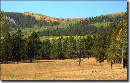 Bureau of Land Management Sites in Idaho